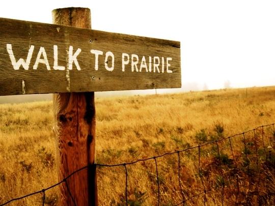 Save the Northwest Prairie!