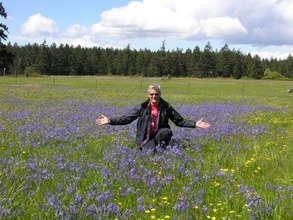 Prairie in full bloom