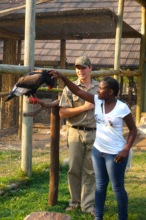 Animal interaction during the EcoClub trip