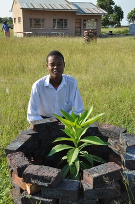 Marothi, one of the boys, with his tree!