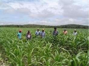 DESMI members farming