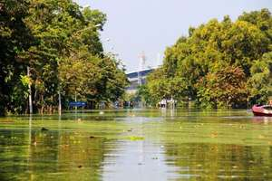 Floods in Rangsit