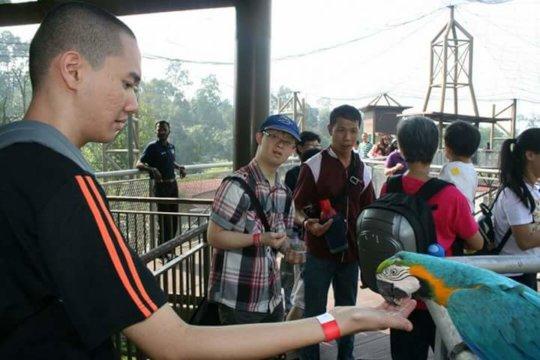 Trainees feeding birds at the park