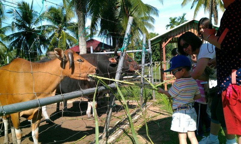 Outing to Melaka Tropical Fruit Farm