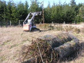 More prairie cleanup Feb 2011