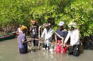 TRY women constructing aquaculture site