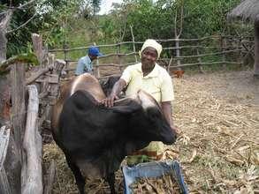 Copperbelt Livelihood Enhancement Project - Zambia