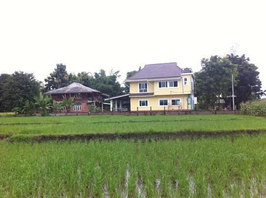 Both classrooms from across the rice field.