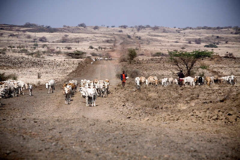 Horn of Africa Drought and Famine Relief Fund