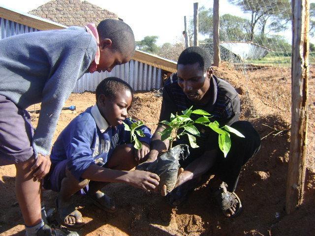 Students plant seedlings - Kenya Rainwater Assoc.