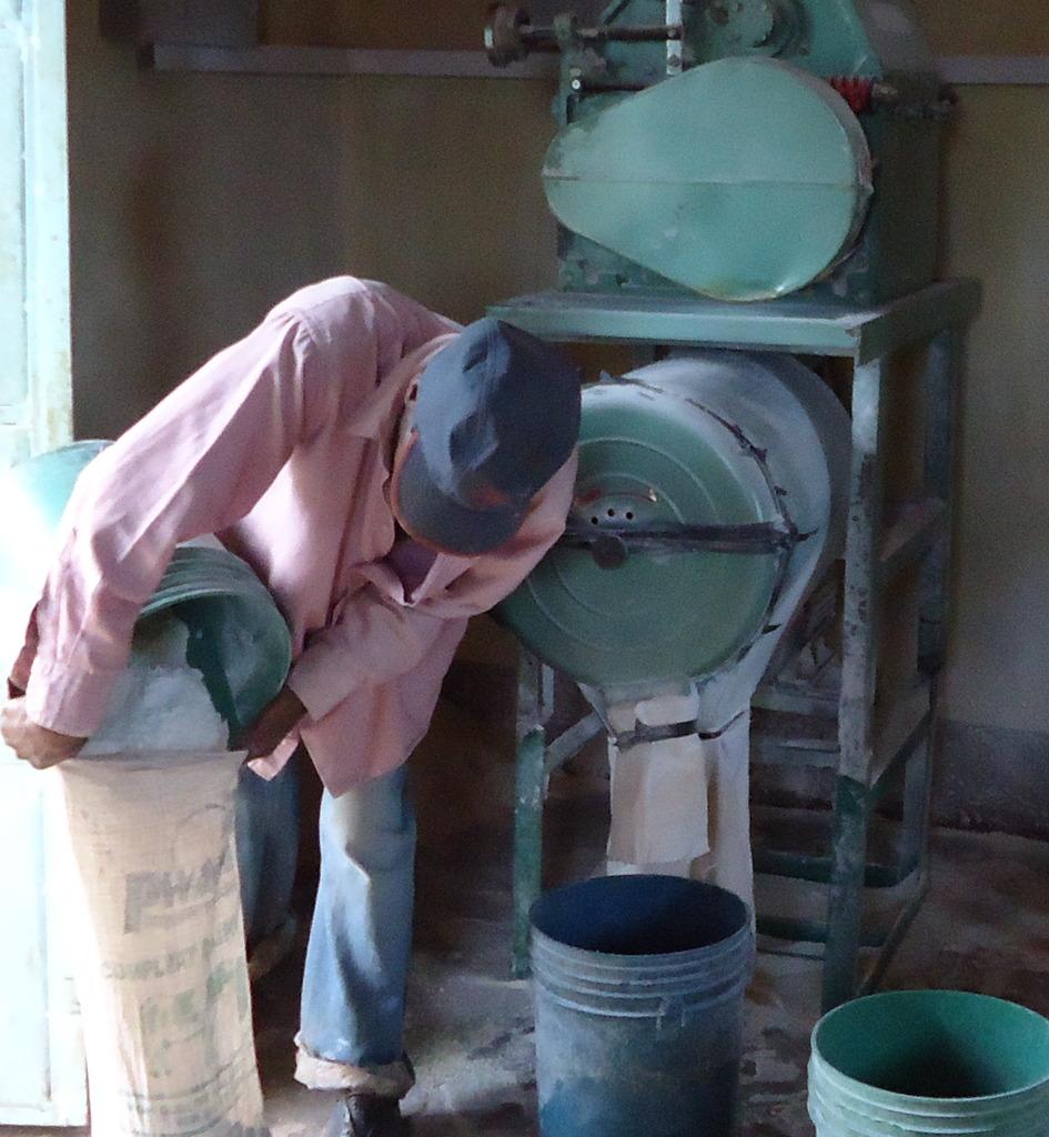 Charles Maina milling his cassava