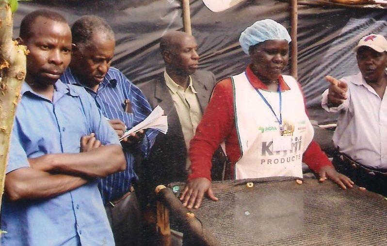 Beneficiaries of cassava growing training