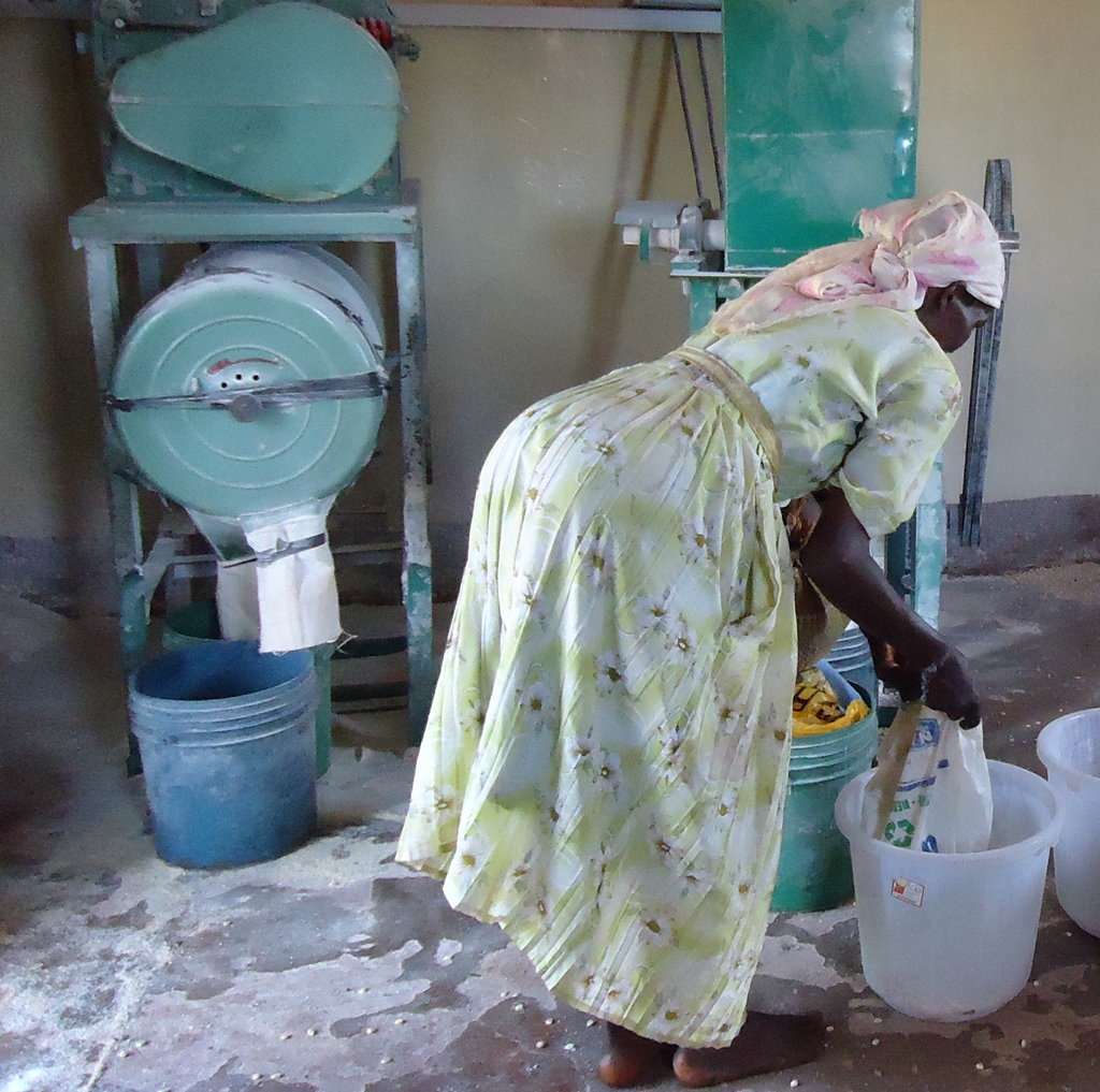 Martha Njoki at the mill grinding her cassava