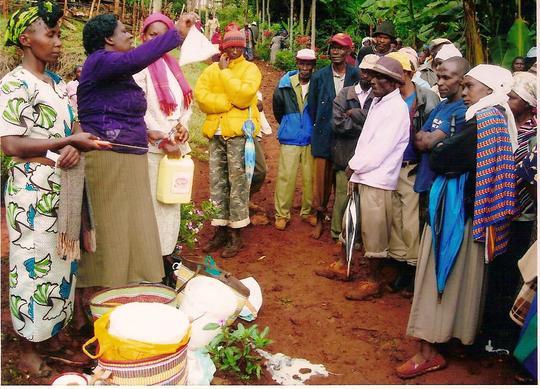Women making cassava based food