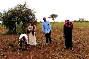 Preparing fields for planting
