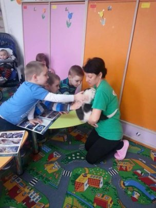 Education in Arad