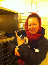 Cat brought in by Good Samaritan and then adopted