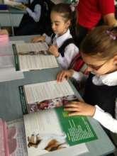 education Vatra Dornei