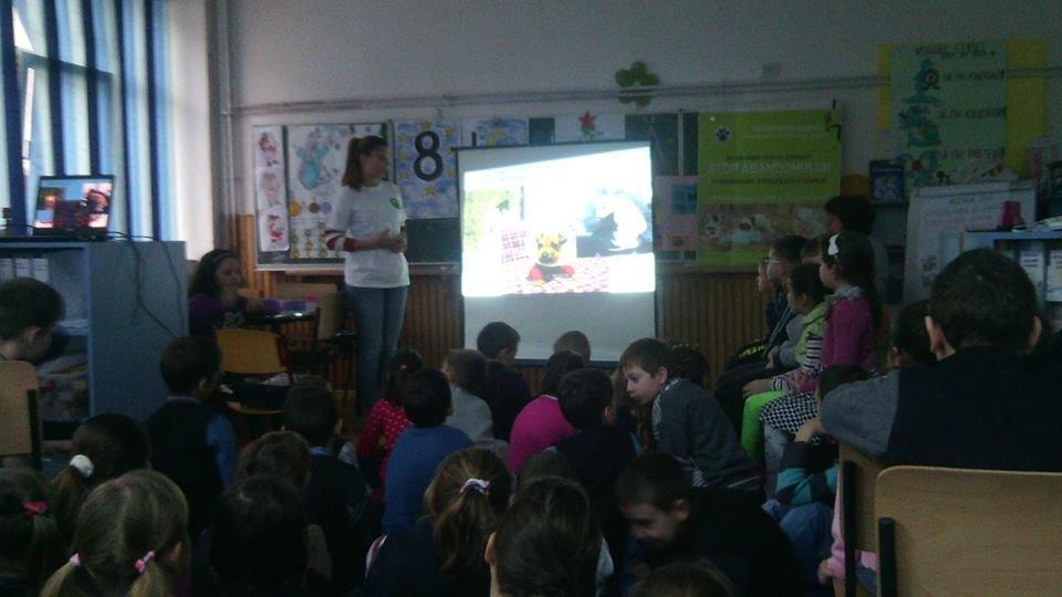 photos of previous Sighetu education campaign