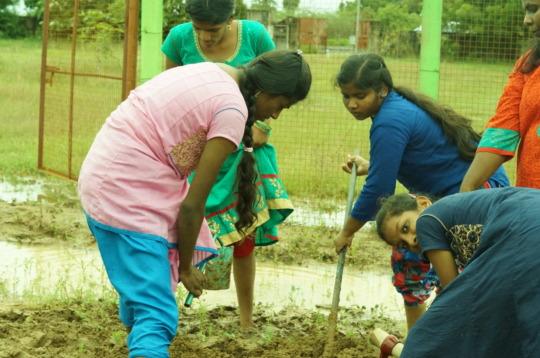 Children removing the weeds  in  vegetable garden