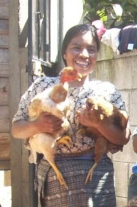 Sustainable Chicken Farm for Guatemalan Women