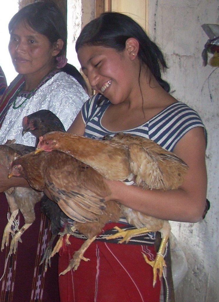 Sustainable Chicken Farm for Guatemalan Women