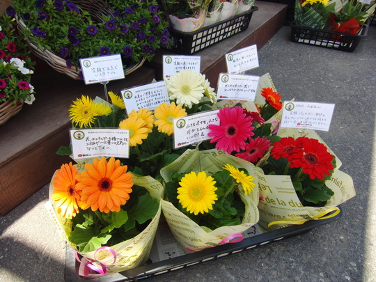 Messages of encouragement (May 2012, Miyagi Pref.)