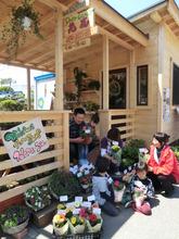 Hanayu Flower Shop (May 13th, 2012 - Miyagi Pref.)