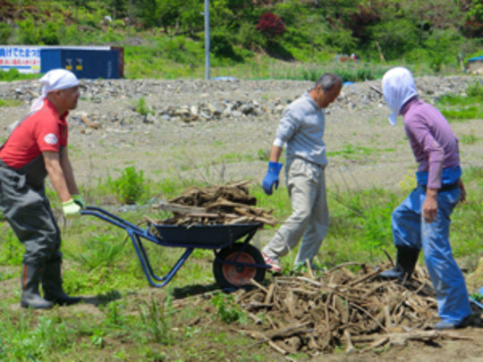 Removing debris and rocks to clean up the garden