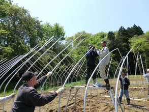 Building Green House at Hibiki Farm