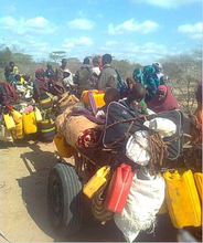 Somali refugees walked 21 days to Kenya border