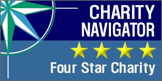 Give an Hour is proud of our 4 Star Charity Rating