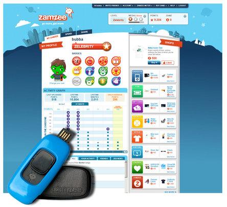 Website + Zamzee Meter