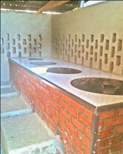 Institutional clean cookstove