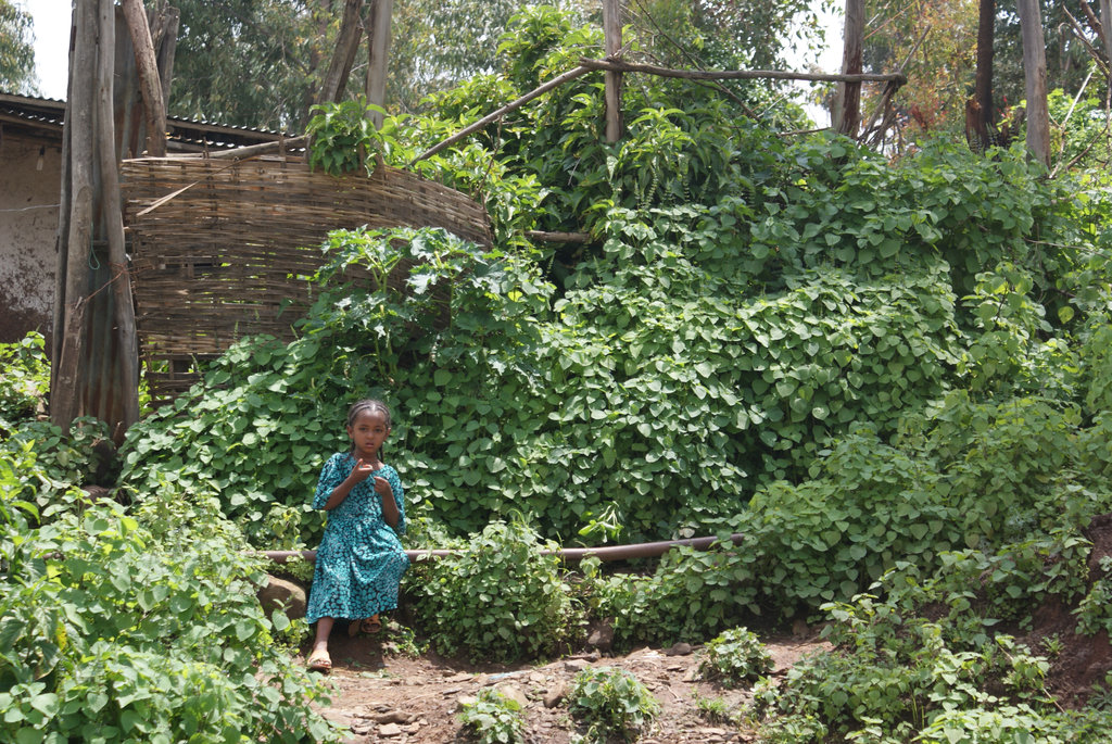 A little girl in Ethiopia