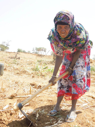 Mama Khadija working hard on her farm.