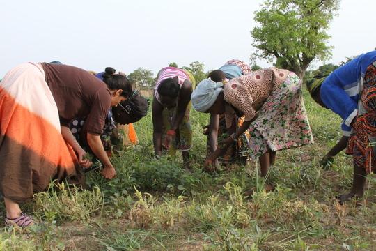 Ritu working with women farmers in Burkina Faso