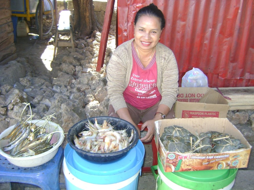 1065 MicroLoans for Rural Poor, Sumba (Indonesia)