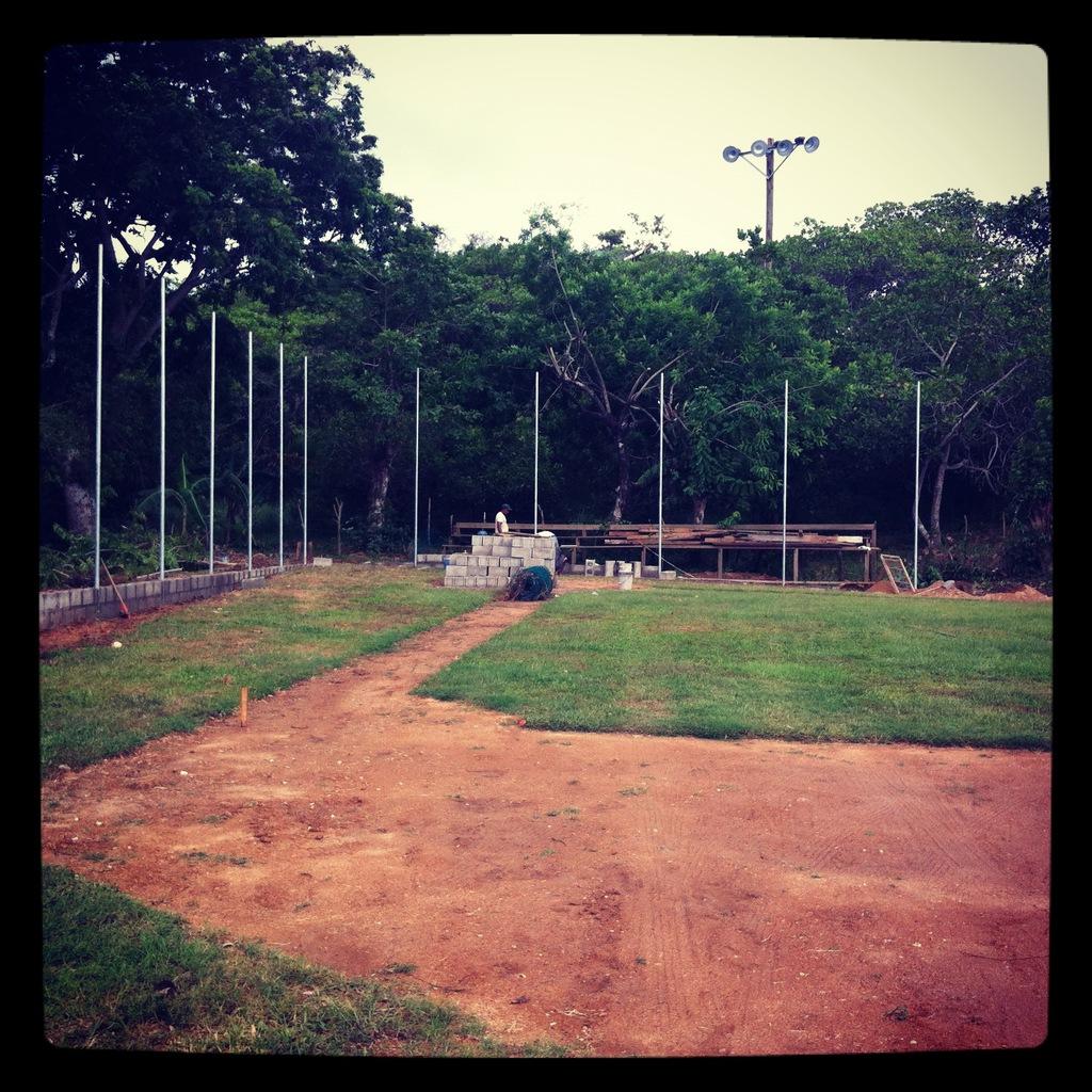 Backstop posts