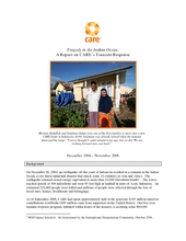 Tsunami Two Year Report (PDF)