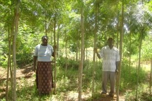 Proud Farmer With Trees She Planted in 2008