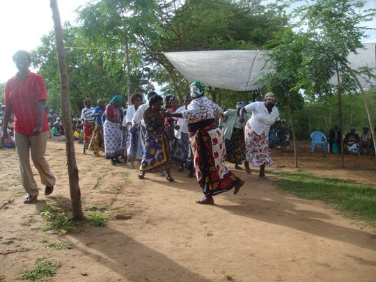 Farmers dance to celebrate after planting trees