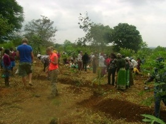 A Food Forest for Mauni Primary School