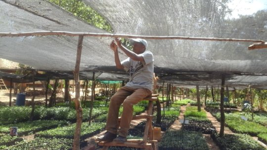 DNRC staff putting up shade net fox expansion