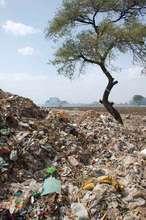 Open dumping in Osmanabad II