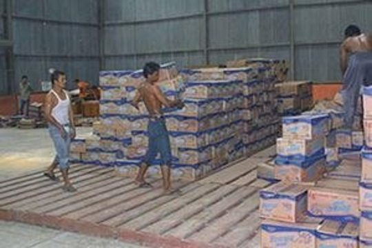 Food distribution to Indonesian tsunami survivors