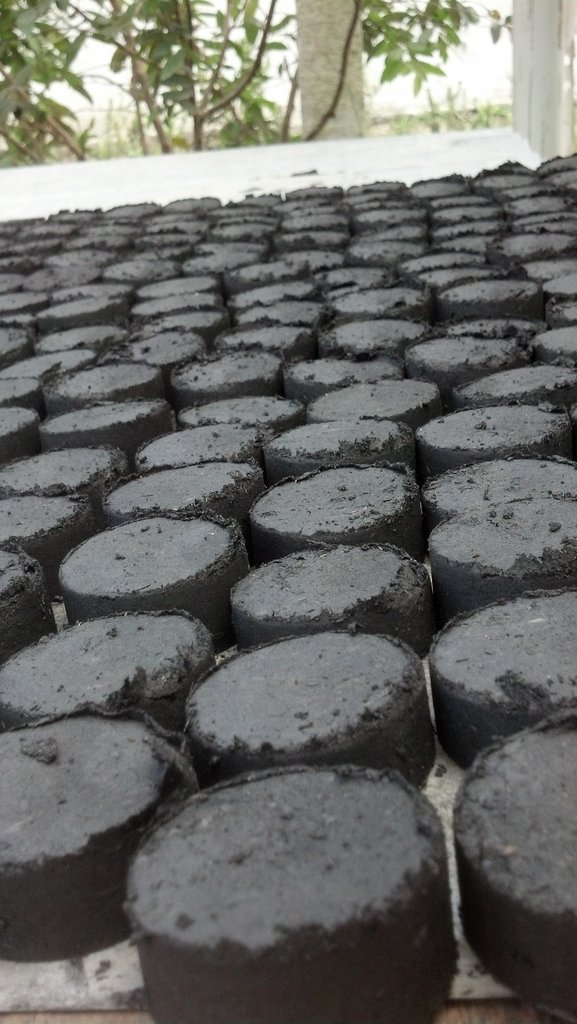 Biochar briquettes