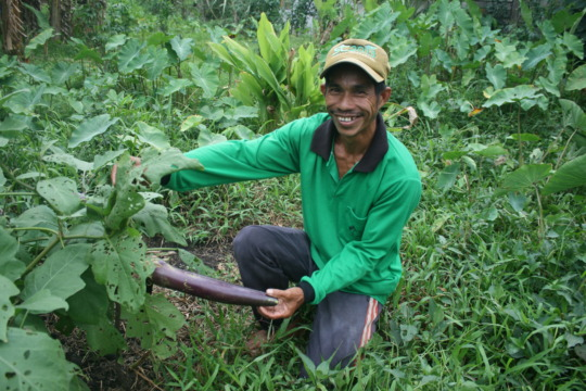 Noor with an eggplant from his organic garden
