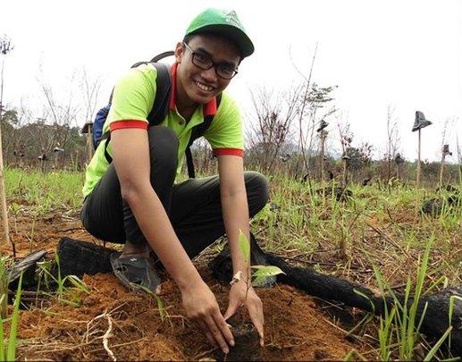 Laman Satong Replanting
