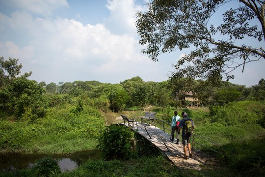 The Sedehan reforestation site - Chelsea Call